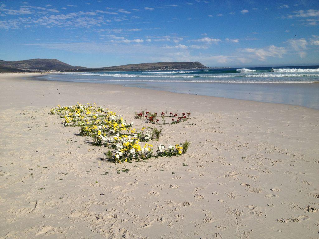 madiba-flowers-and-sea