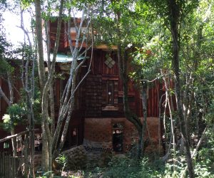 Forest Fantasy (The House That Chunkie Built)