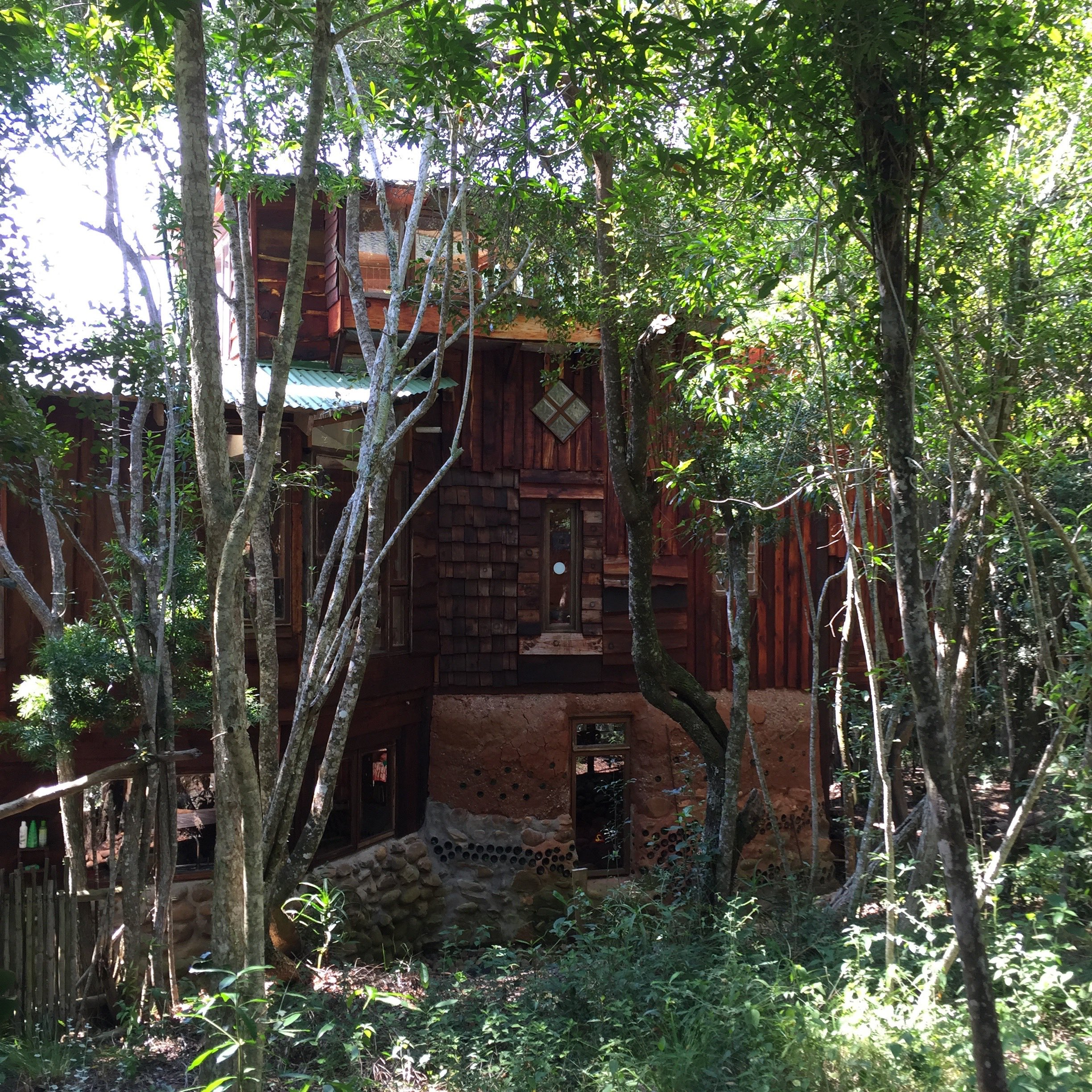 Forest Fantasy The House That Chunkie Built Jacqui L Ange